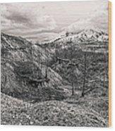 Mt. St. Helen's Wood Print