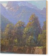 Mt. Tewhero Holyford V.landscape Wood Print by Terry Perham