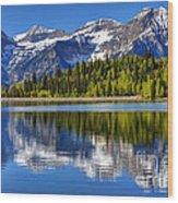 Mt. Timpanogos Reflected In Silver Flat Reservoir - Utah Wood Print