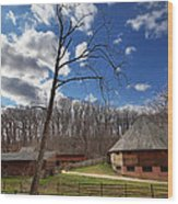 Mt Vernon - 01134 Wood Print by DC Photographer