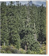 Mt Washington Behind Clear Lake Wood Print