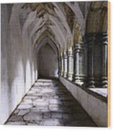 Muckross Abby Cloister Killarney  Ireland Wood Print