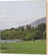 Muckross Lake And Garden Wood Print