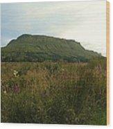 Muckrum Leitrim County Leitrim Ireland Wood Print