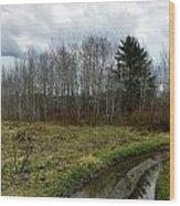 Mud Season Wood Print by Gene Cyr