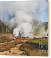 Mud Volcano And Sulphur Caldron  Wood Print