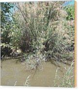 Muddy River Wood Print
