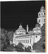 Mueller'sches Volksbad - Munich Germany Wood Print