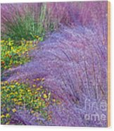 Muhly Grass In The Morning Wood Print