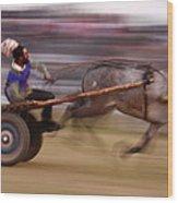 Mule Cart Race Wood Print