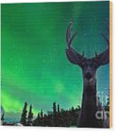 Mule Deer And Aurora Borealis Over Taiga Forest Wood Print
