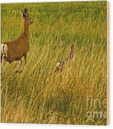 Mule Deer Doe And Fawn-signed-#0365 Wood Print