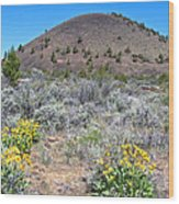 Mule's Ears And Schonchin Butte In Lava Beds Nmon-ca Wood Print