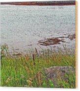 Mulholland Point Lighthouse On  Campobello Island-nb Wood Print