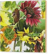 Multi-color Sunflowers Wood Print