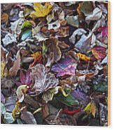 Multicolored Autumn Leaves Wood Print
