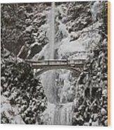 Multnoma Falls In Winter Wood Print