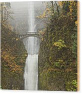 Multnomah Autumn Mist Wood Print by Mike  Dawson