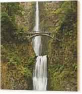Multnomah Falls 2 B Wood Print