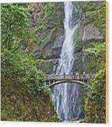 Multnomah Falls 4 Wood Print