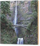 Multnomah Falls Wood Print