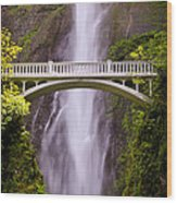 Multnomah Falls Silk Wood Print