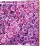 Mums In Purple - Featured In 'comfortable Art' And 'nature Photography' Groups Wood Print
