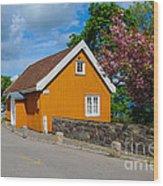 Munch's House Wood Print