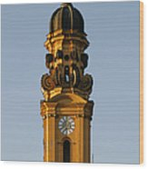 Munich Theatine Church Of St. Cajetan - Theatinerkirche St Kajetan Wood Print by Christine Till