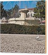 Municipal Square Fountain Wood Print