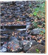 Munising Falls II Wood Print