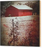Murder In The Red Barn Wood Print
