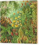 Muscinae Wood Print
