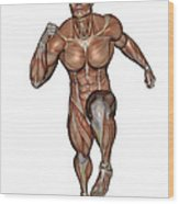 Muscular Man Running Wood Print