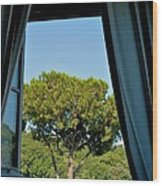 Musei Vaticani Wood Print