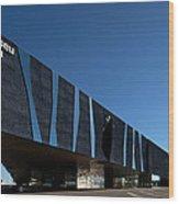 Museu Blau De Les Ciencies Naturals Wood Print