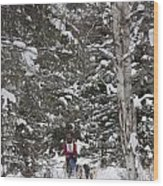 Musher In The Forest Wood Print