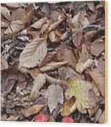Mushroom And Leaves Wood Print