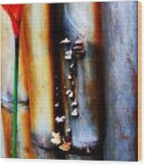 Mushroom On Bamboo 2 Wood Print
