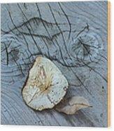 Mushroom On Wooden Plank Wood Print