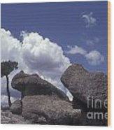 Mushroom Rocks Copper Canyon Mexico Wood Print