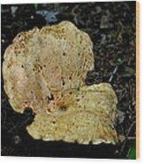 Mushroom Supreme Wood Print