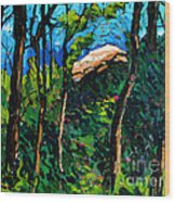 Mushrooming At Treaty Rock Wood Print by Charlie Spear
