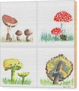 Mushrooms On Parade Collage Wood Print