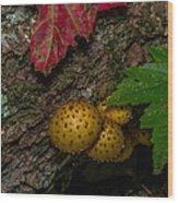 Mushrooms On The Forest Floor Wood Print