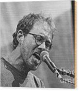 Musicians Warren Zevon Wood Print