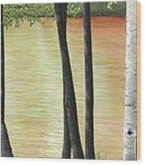 Muskoka Lagoon Wood Print