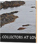 Mussel Collectors At Low Tide - Shellfish - Low Tide Wood Print