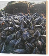 Mussels On A Rock Wood Print