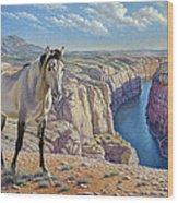 Mustang At Bighorn Canyon Wood Print by Paul Krapf